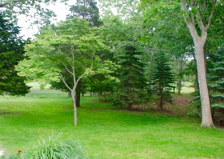 East Hampton Springs, East Hampton, NY, 11937, $2,000,000, Property For Sale, Halstead Real Estate, Photo 19