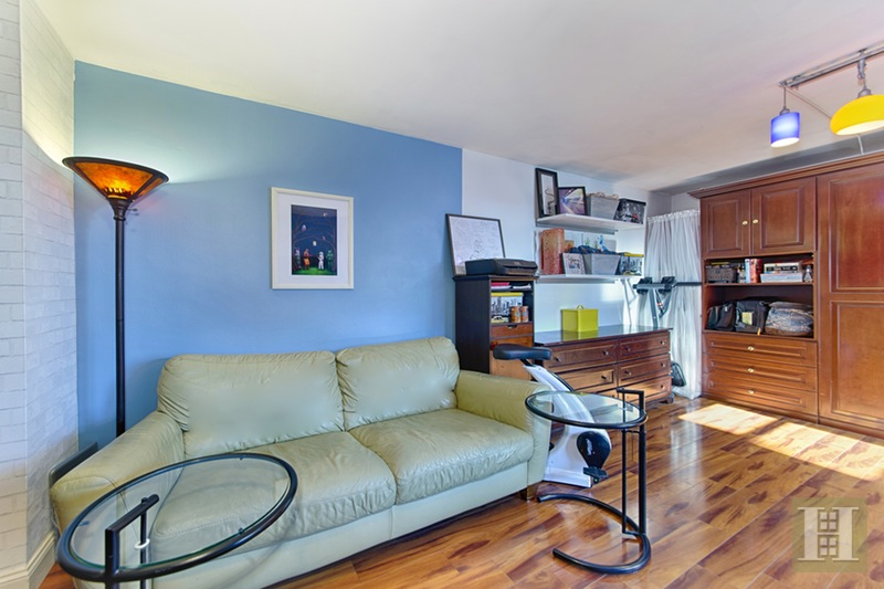 385 Grand Street, Lower East Side, NYC, 10002, $449,000, Sold Property, Halstead Real Estate, Photo 3