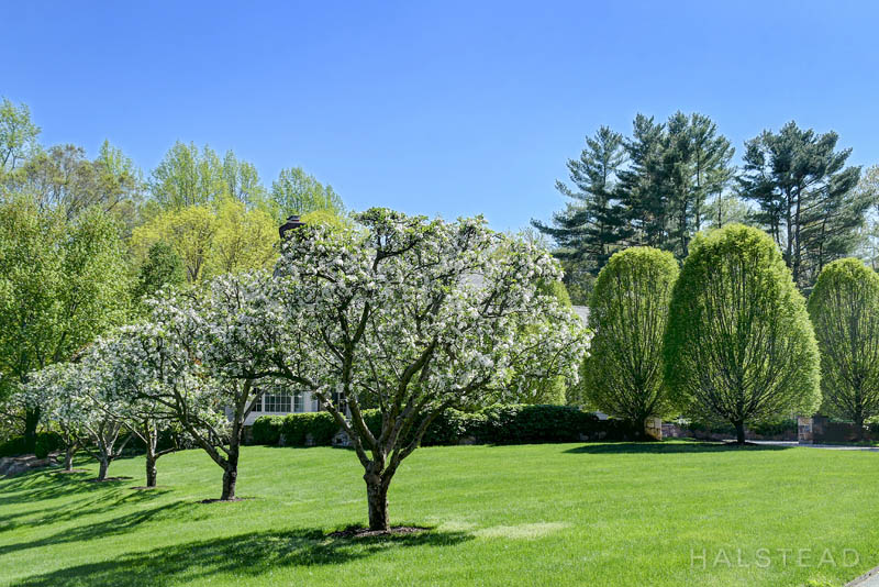 507 Silvermine Road, New Canaan, Connecticut, 06840, $3,350,000, Property For Sale, Halstead Real Estate, Photo 10