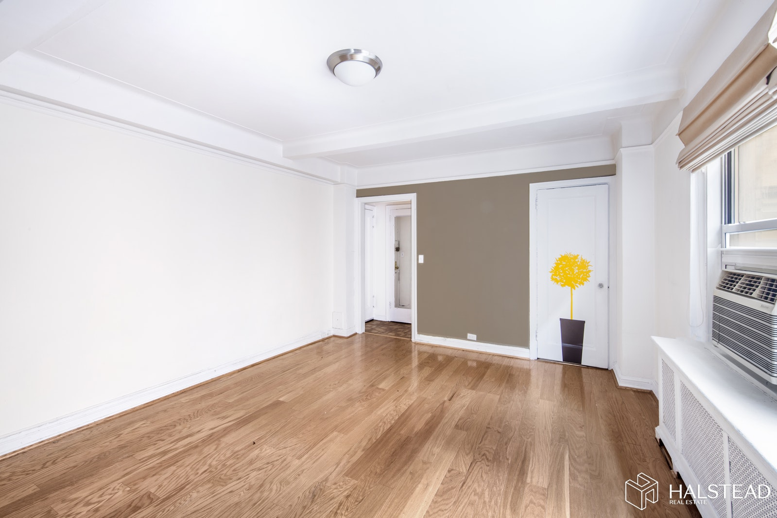 70 Remsen Street 6e, Brooklyn Heights, Brooklyn, NY, 11201, $360,000, Property For Sale, Halstead Real Estate, Photo 2
