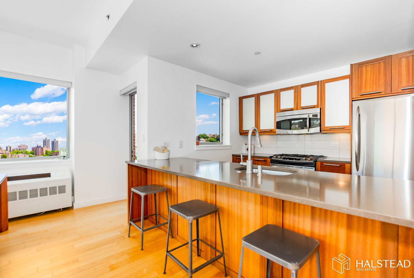 3585 Greystone Avenue E5c, Riverdale, New York, 10463, $650,000, Property For Sale, Halstead Real Estate, Photo 9